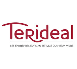 logo terideal